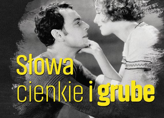 Tadeusz Boy-Żeleński, Słowa cienkie i grube